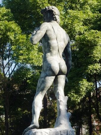 Epilation définitive des fesses et du sillon interfessier des hommes