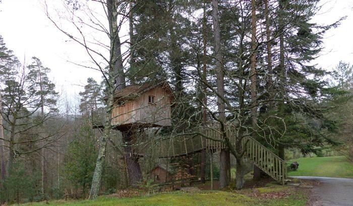 Les cabanes dans les arbres en Alsace