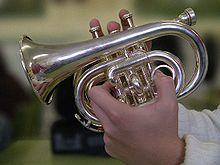 POUR LES MUSICIENS JOUANT DES INSTRUMENTS A EMBOUCHURE   LE YOGA DU VISAGE